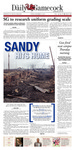 The Daily Gamecock, FRIDAY, NOVEMBER 2, 2012