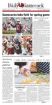 The Daily Gamecock, Monday, April 14, 2014