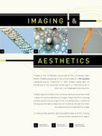 Imaging and Aesthetics by Allison Marsh