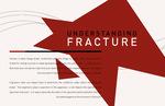 Understanding Fracture
